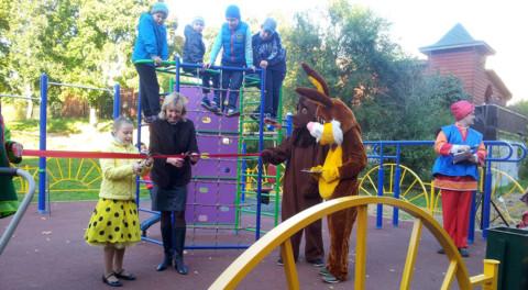 В Пушкино пригласят на субботник депутатов