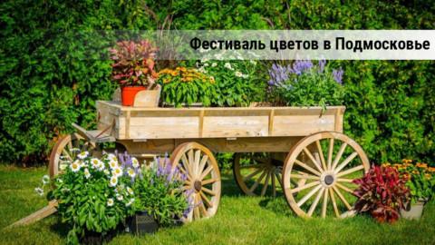 «Русские ландшафты» на Богородской земле