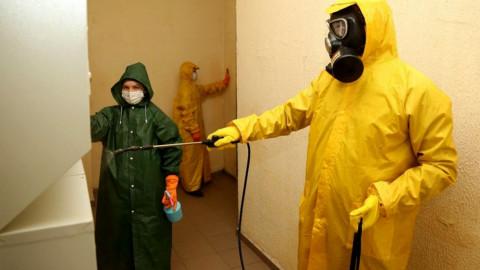 Итоги первого месяца масштабной дезинфекции подъездов в Подмосковье