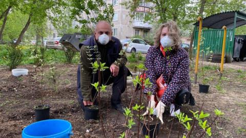 Помощь с благоустройством дворов в Долгопрудном