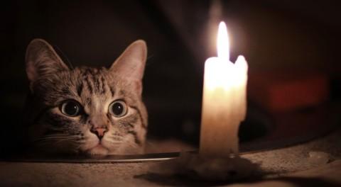 Что делать, если у вас отключился свет?