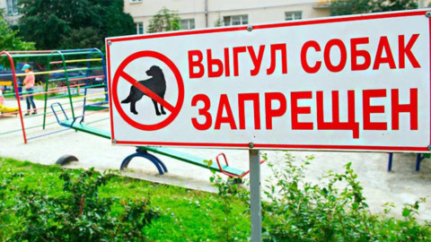 Новые правила выгула домашних животных